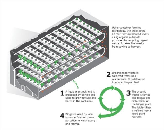 Ikea lechugas contenedores operativa