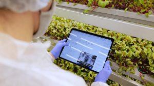 ifarm, granjas del futuro